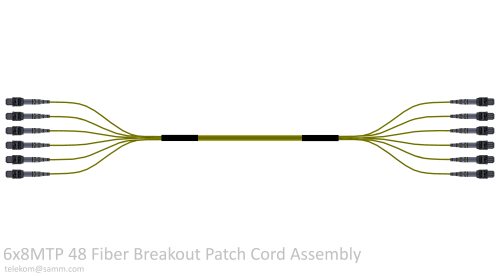 6x8MTP 48 Fiber Breakout Patch Cord Assembly