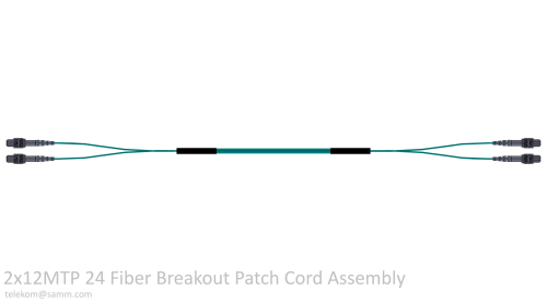 2x12MTP 24 Fiber Breakout Patch Cord Assembly