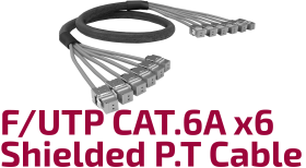 F/UTP CAT.6A Shielded X6 Pre-terminated Cable