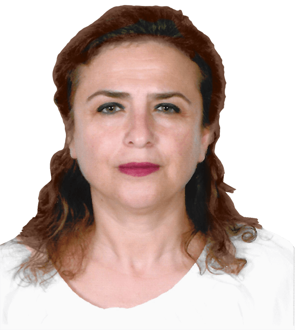Ayşe Akşit | R&D and Technology Director