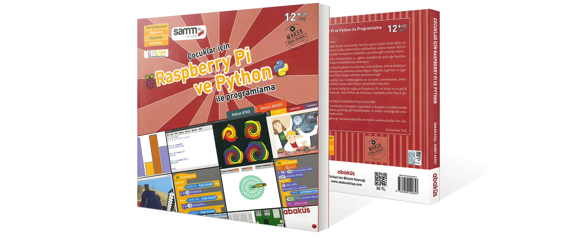 Raspberry Pi and Python Programming for Children