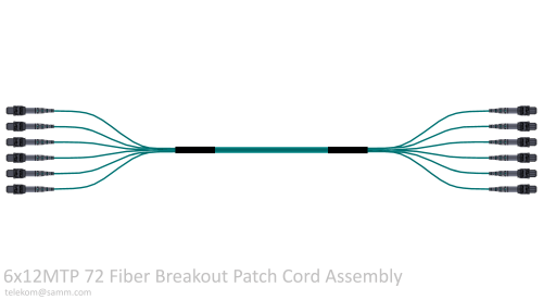 6x12MTP 72 Fiber Breakout Patch Cord Assembly
