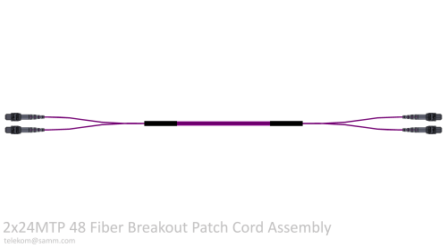 2x24MTP 48 Fiber Breakout Patch Cord Assembly