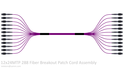 12x24MTP 288 Fiber Breakout Patch Cord Assembly