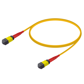 MTP-MTP Base-24 Single-Mod Fiber Patch Cord