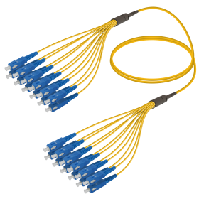 SC-SC | Single Mod - 12 Fiber - Fanout Patch Cord | 3.0/1.8mm