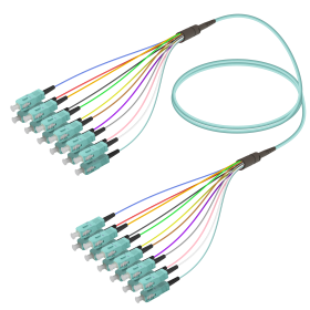 SC-SC | Multi Mod - 12 Fiber - Fanout Patch Cord | 3.0/0.9mm